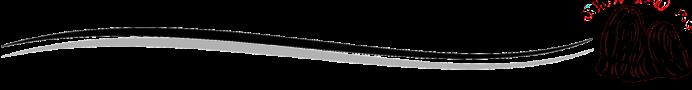 rylogo-viiva1