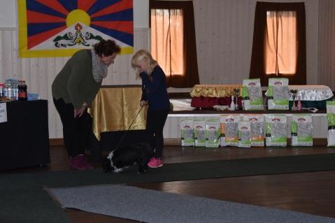 Lapsi ja koira kilpailu